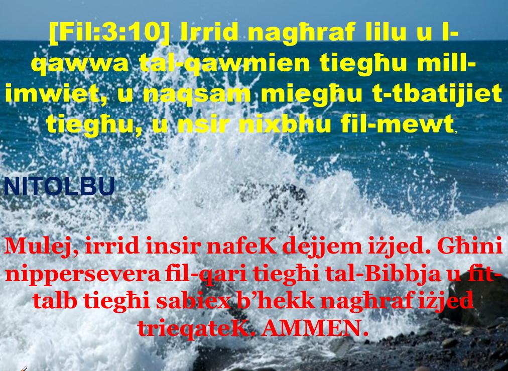 bible07022016